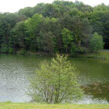 Blaguško jezero 6