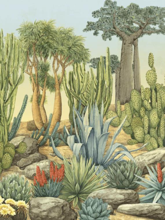Desert Garden Color