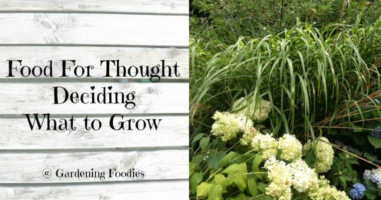 Food for thought – Deciding what to grow