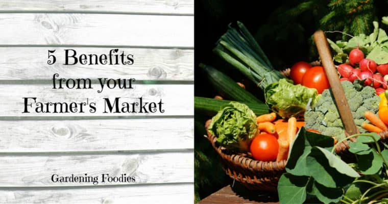 5 Benefits of Your Farmers Market