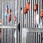 Hampir 400 migran ilegal ditahan di Turki