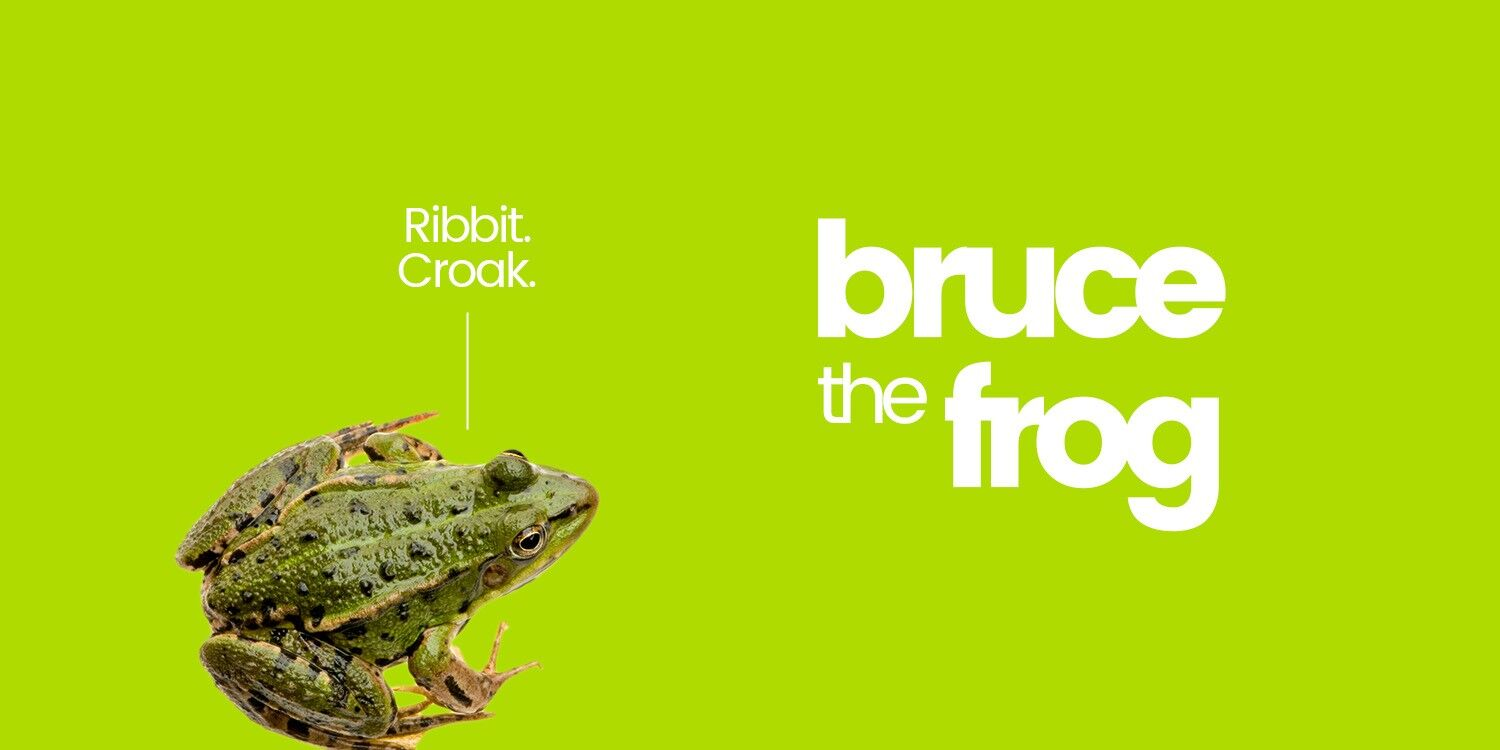 Bruce the Frog