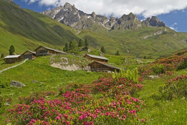 Alpine Action: Hikes & Bikes in Valle Isarco (Eisacktal Valley)