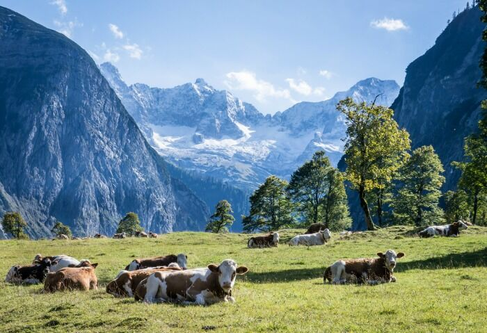 Ancient Ice-Age landscapes on the Geological Trail in Wallgau