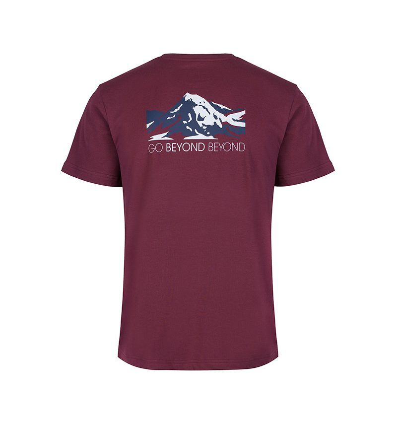 'Go Beyond Beyond' Heart Sutra inspired, raisin T-shirt showing the face of Buddha layered within the snow capped mountains.