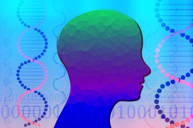 Hipnotismo, Salud y Educación